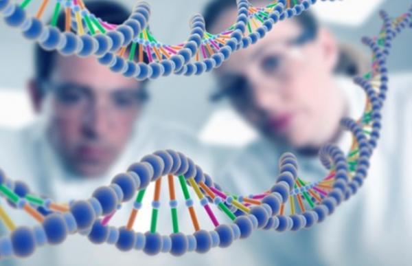 جينات المغاربة.. باحثون يرسمون الخارطة الجينية للمجتمع .. تعرف على السبب!!