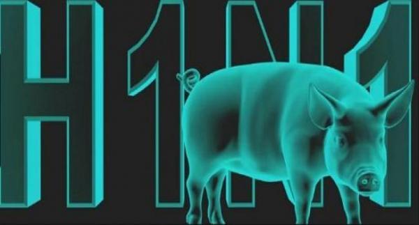 بمراكش وحدها: سبع حالات إصابة بأنفلونزا الخنازير