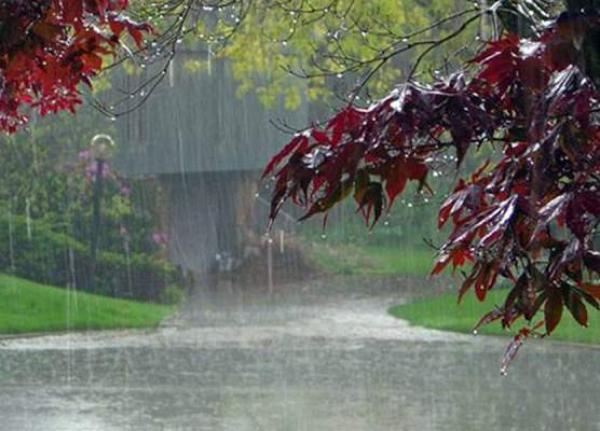 موسم فلاحي يبشر بالخير...زخات مطرية رعدية قوية اليوم بمجموعة من مناطق المملكة