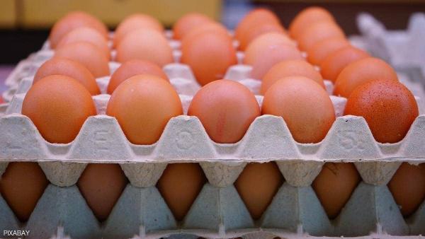"""تعرف على قصة """"كرتونة البيض"""".. الطريقة الأساسية لحفظ البيض في المحلات الغذائية"""