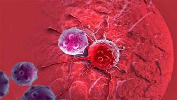 """وداعا السرطان... """"البذرة المعدنية"""" تدمر الأورام في 10 دقائق"""