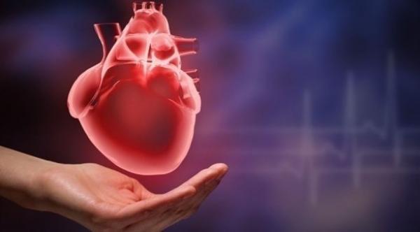 اكتشاف عامل جديد يساغد غلى التنبؤ المبكر باحتمال فشل القلب