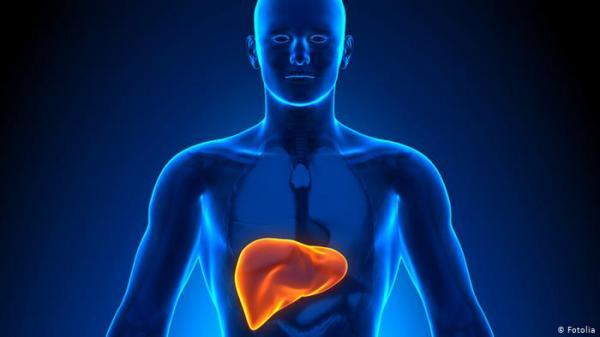 مؤشرات تنذر بمرض في الكبد