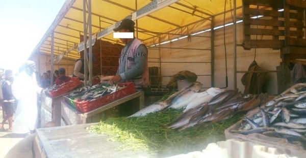 مندوبية التخطيط: 2019 شهدت انخفاضا في أسعار السمك و اللحوم مقابل ارتفاع أسعار الخضر