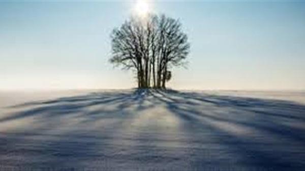 من هم الذين يظلهم الله في ظله يوم القيامة؟