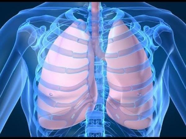 تدابير و إجراءات عملية  للوقاية من الالتهاب الرئوي