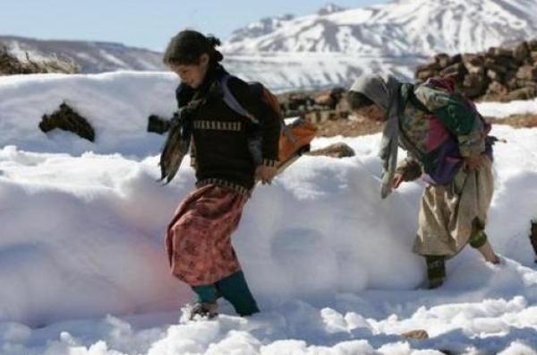 سياسيون يطالبون بتعويض ضحايا البرد والثلوج ولهذا دعوا الحكومة