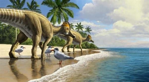 اكتشاف حفرية لطائر عملاق عاش مع الديناصورات ارتفاعه 1.5 متر