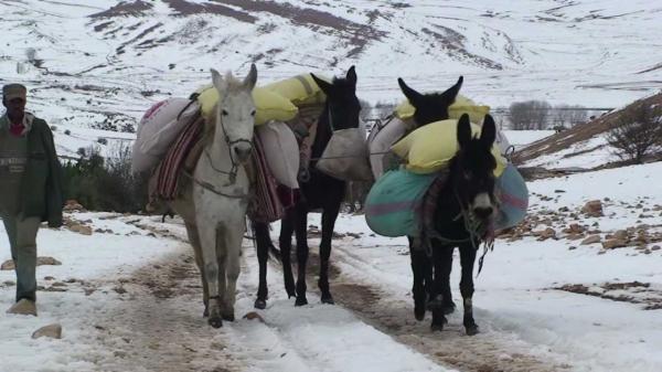 جبليون يحملون الحكومة مسؤولية مأساة محاصرتهم بالثلوج