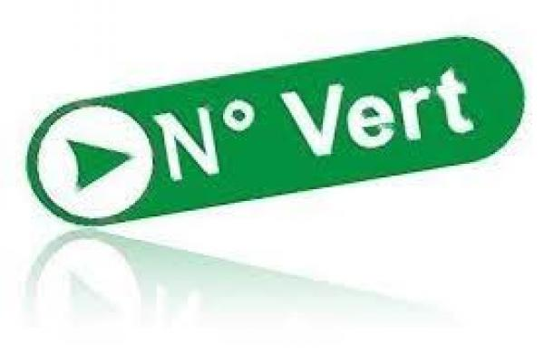 إطلاق رقم أخضر لفائدة أفراد الجالية المغربية المقيمة بالخارج