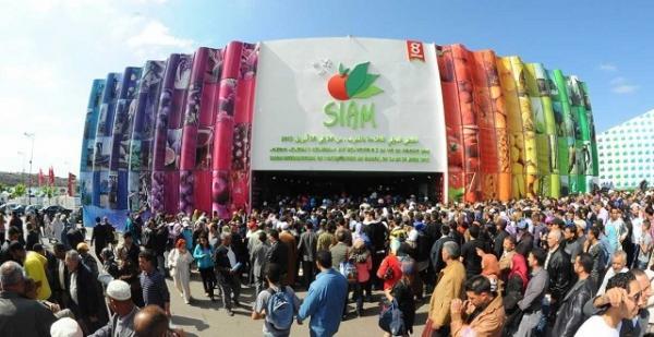 المعرض الدولي للفلاحة بالمغرب .. أكثر من 850 ألف زائر خلال سنة 2019