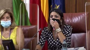 فأر يدخل برلمان إقليم الأندلس في إسبانيا يتسبب في حالة فزع وفوضى بين النواب