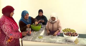 الطقوس الخاصة لموسم جني الزيتون بالمغرب على قناة الجزيرة