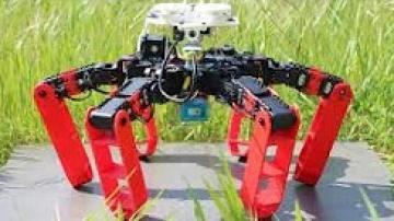 """""""أنتبوت"""" روبوت مستوحى من نمل الصحراء...قادر على التحرك من دون نظام التموقع الجغرافي"""
