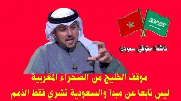 حقوقي سعودي: موقف الخليج من الصحراء ليس مبنيا على مبادئ و السعودية تشتري الذمم لكسب الولاء
