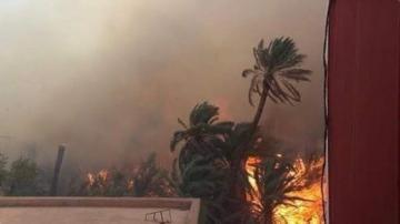 حريق تفراوت يتسبب في حرق 5 هكتارات و أكتر من 1500 نخلة و زيتون