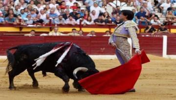 لأسباب سياسية.. استئناف مباريات مصارعة الثيران الإسبانية بحضور مشجعين