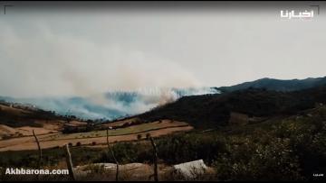 شاهد كيف انتشرت النيران في المجال الغابوي بمنطقة العليين - المضيق