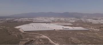 ألميريا الإسبانية: منطقة زراعية تسبب كارثة بيئية!!
