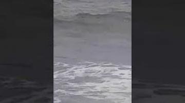 إنقاذ فتاة من الغرق بأحد شواطئ تطوان