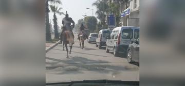 مسابقة للخيول وسط شوارع كازا