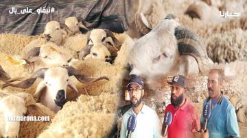 قبيل العيد من منطقة تمدروست: إقبال كبير للمواطنين على الضيعات والحولي من 1500 درهم إلى 4000