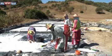 نساء يعملن باستخراج الملح وتجفيفه في قرية نواحي وزان