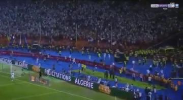 شاهد الفرحة الجنونية للاعبي الجزائر بعد نهاية المباراة والتتويج باللقب
