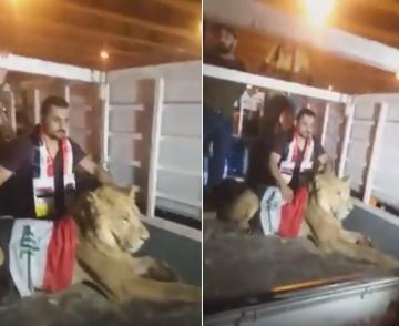 شاب عراقي يصطحب أسدا معه إلى إحدى ساحات المظاهرات لمواجهة كلاب قوات الأمن