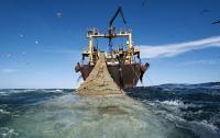 """""""البوليساريو"""" تتلقى صفعة اقتصادية موجعة وأولى سفن الصيد الأوروبية تدخل المياه الإقليمية المغربية"""