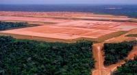 الأمازون ستتحول إلى أرض قاحلة في مدة لم نكن نتوقعها