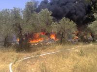 """عاجل...حريق مهول يأتي على هكتارات من أشجار الزيتون ويهدد منازل السكان """"فيديو"""""""