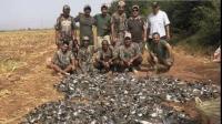 هذه الجهة تعتزم اللجوء إلى القضاء بعد المجزرة الخليجية في حق الطيور ضواحي مراكش