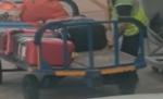 بالفيديو : كاميرا ترصد عاملا في مطار يسرق حقيبة راكب